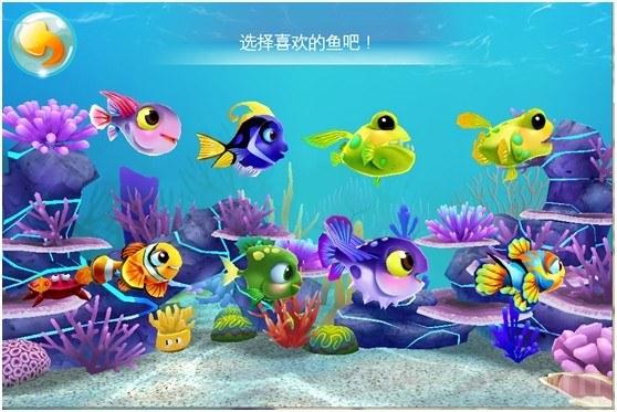 一个个二头身小鱼儿,无辜萝莉眼神,配上天然呆卖萌,满满的都是爱啊有